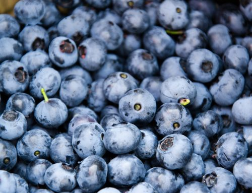 Increase Your Body's Resiliency with Antioxidants